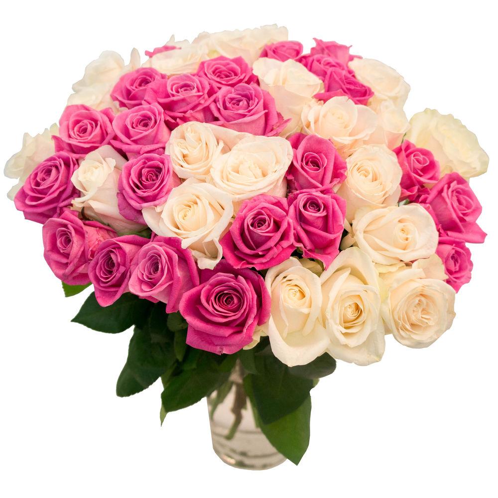 какие розы будут свежими